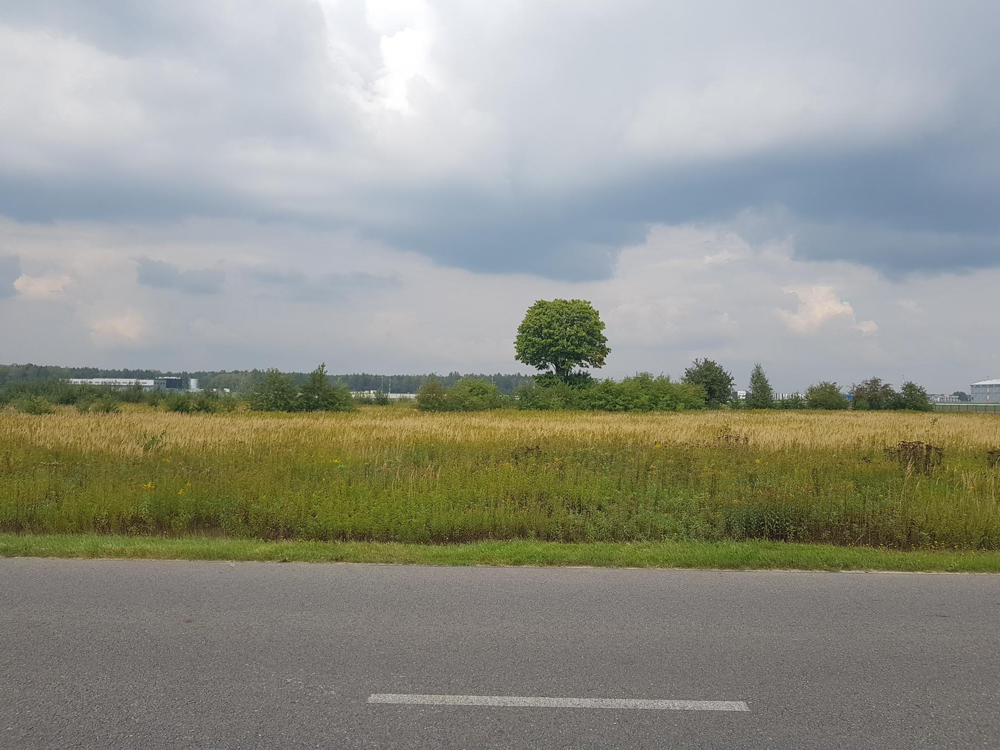 Investment land in Zaczernie