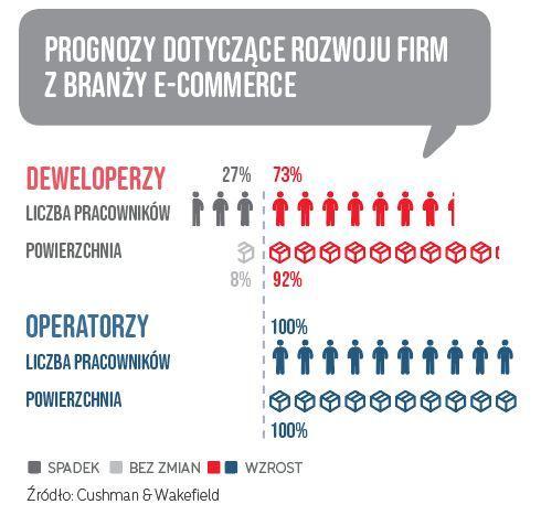 Prognozy dotyczące rozwoju firm z branży e-commerce